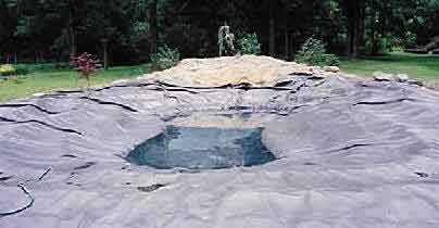 pond liner two photo